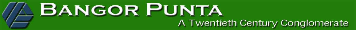 Bangor Punta Website - Link to Homepage
