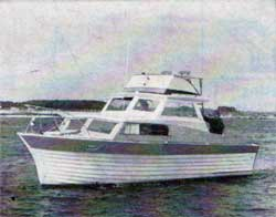 Ulrichsen 29 Foot Trunk Cabin Power Boat