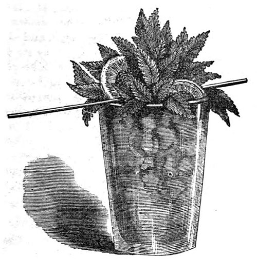 Mint Julep © 1862 How to Mix Drinks