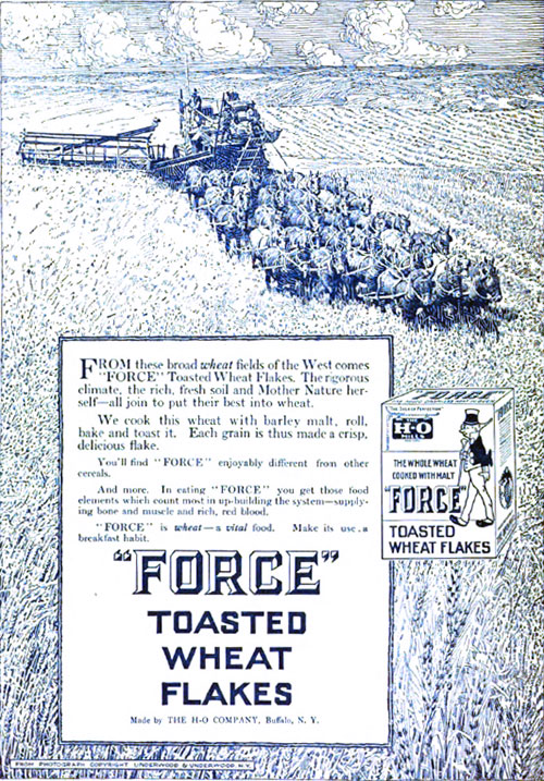 FORCE-Toasted Wheat Flakes Ad - 1913