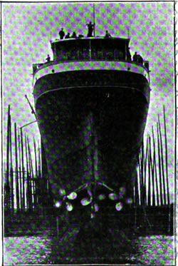 View of the Stern showing the Triple Scews of the Allan Line T.S.S. Victorian