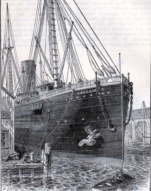 Illustration of the Bow of an American Steamer