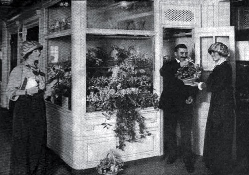 Photo04: The Florist Shop Of The Imperator