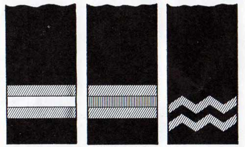Sleeve Stripes - Purser, Surgeon, and Chief Steward