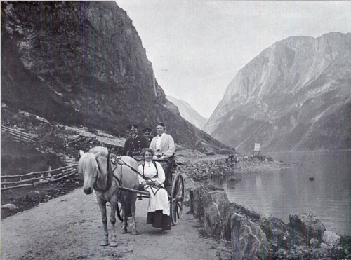 Photo 115: View of road on Nærøyfjorden showing Fjording or Norwegian Fjord Horse pulling a two-wheeled buggie known as the Stolkjaerre