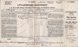 White Star Line Steamship Contract - Swedish Immigrant - 1902