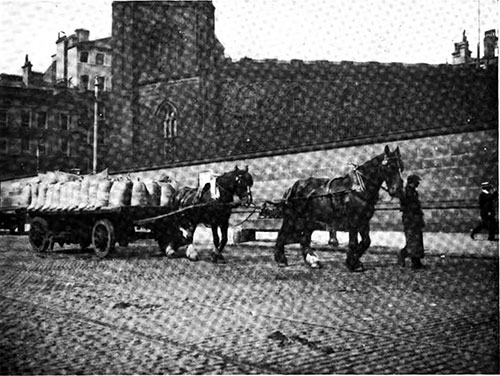 Two-Horse Tandem Hitch Transporting Goods from Docks to Warehouses.