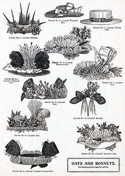 Hat and Bonnets for the Summer of 1896