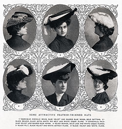 Some Attractive Feather-Trimmed Hats