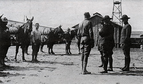 General Scott, Commander of Camp Dix. Inspecting Army Mules.